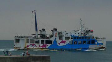 Dolphinb463